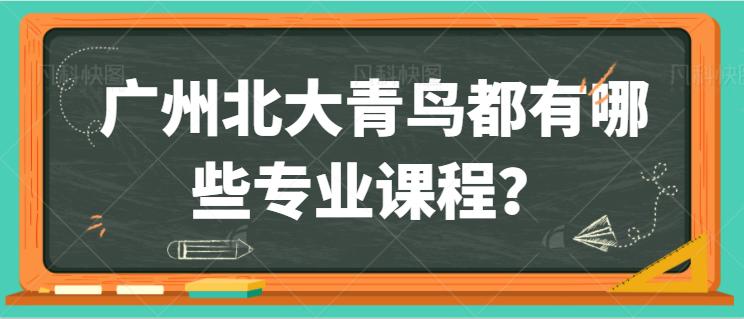 广州北大青鸟都有哪些专业课程?