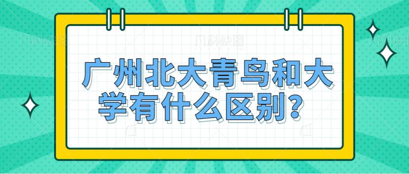 广州北大青鸟与大学有什么区别?
